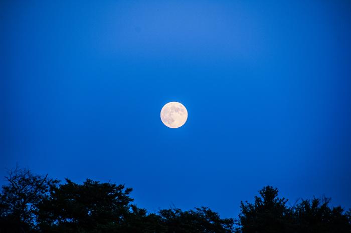 美しすぎる中秋の名月を満喫・・・各史跡でもイベント多数!