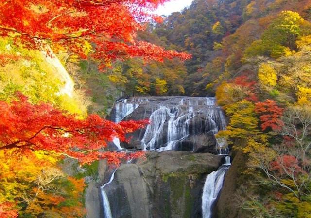 【 パワスポめぐりがすきな方へ 】口コミで選ばれた「 日本の滝ランキング 」いくつ知ってる?いくつ行った?