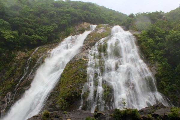 鹿児島県屋久島の大川の滝。こちらも雄大!