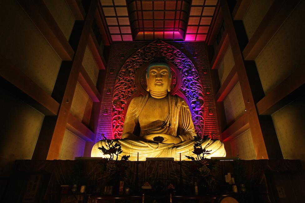 【 日本夜景遺産認定! 】ライトアップで味わう幻想的な博多の夜