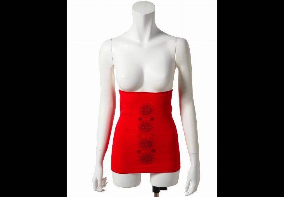 【 ウソかマコトか? 】申年の申日に赤い下着を付けると幸せになるらしいって知ってる?
