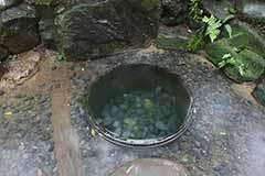 明治神宮の御苑の中にある「清正井」雰囲気抜群。