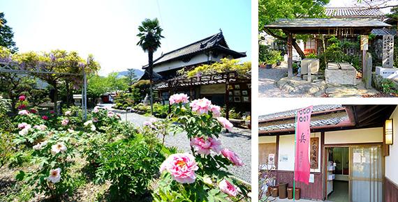 真田幸村と昌幸親子が隠れ住んでいた和歌山県九度山にある真田庵