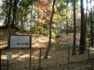 石神井城跡(土塁と堀)