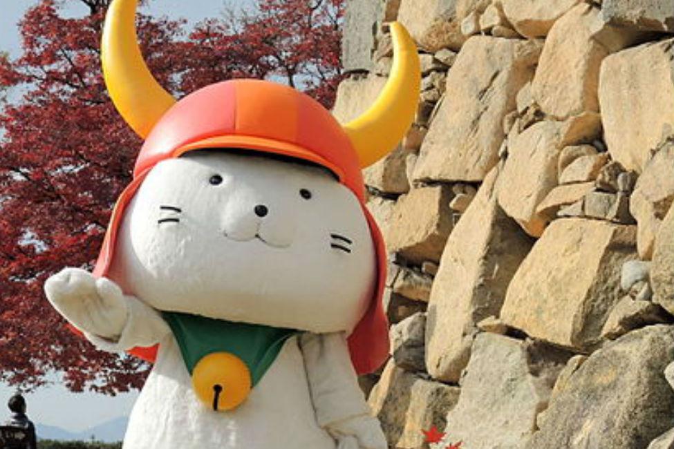 【 こう見えて立派な武家猫 】 ひこにゃんと井伊家の素敵な関係