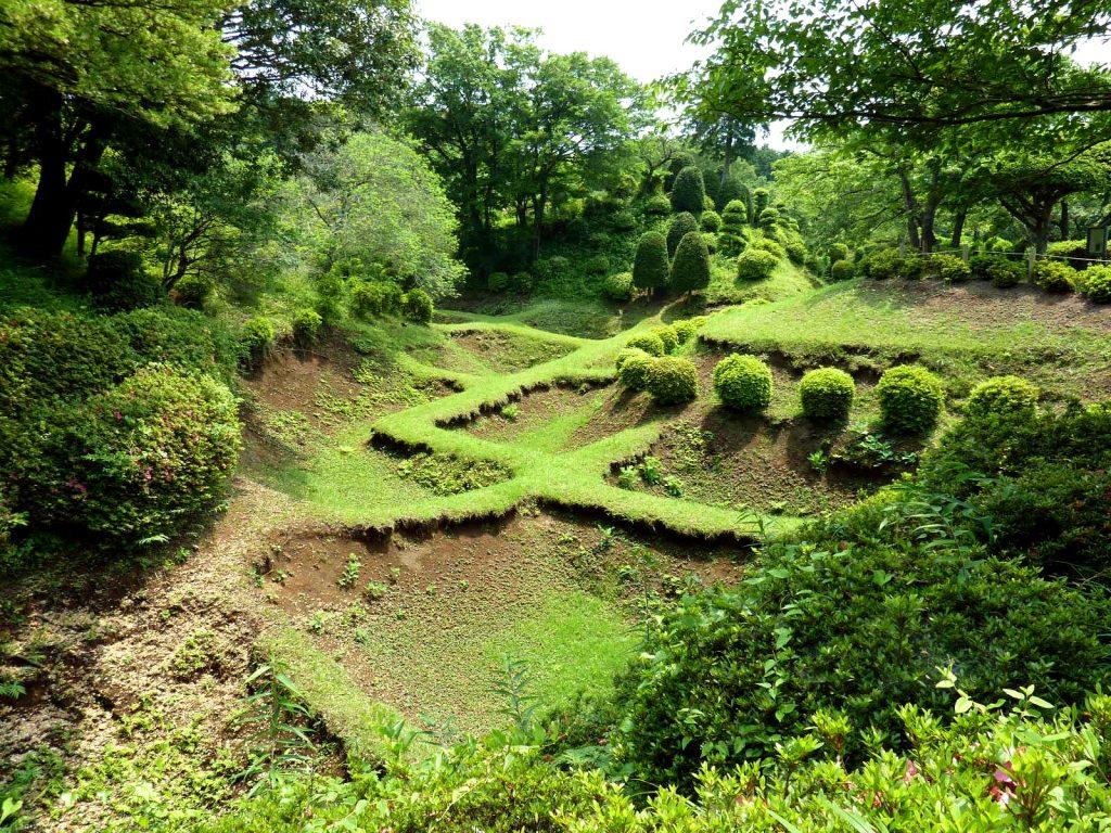 美しい畝堀。