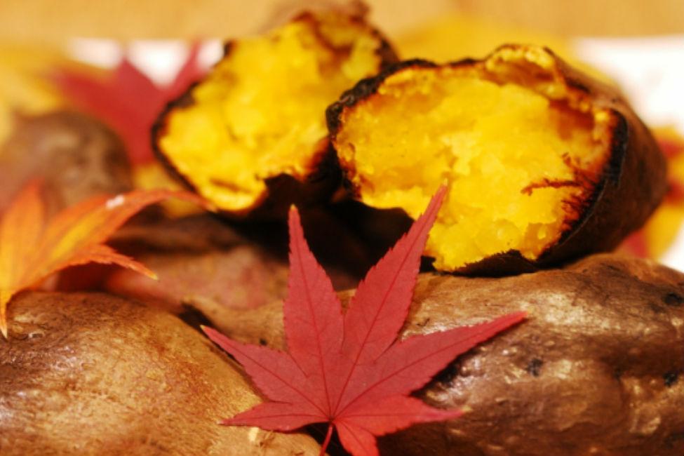 【 今が旬!】 徳川吉宗が広めたサツマイモが明治維新を支えた?