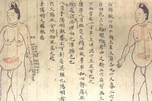 【 人気時代劇からアニメ化まで 】 鬼平犯科帳「鬼の平蔵」こと長谷川平蔵とは?