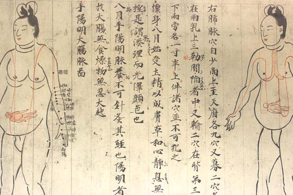 【 占い、毛生え薬、性行為まで!? 】日本最古の医学全書「医心方」が面白い