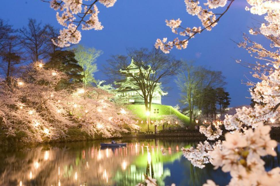 【 美しすぎる日本三大夜桜 】一生に一度は見たい!「高田城 百万人観桜会」が新潟県上越市で今年も開催