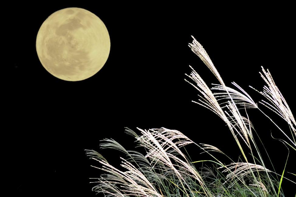 【上杉謙信も漢詩を詠んだ?】意外と知らないお月見の歴史